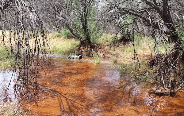 HYDROGEOLOGIST-CONSULTANT-PERTH-Controlled groundwater discharge during test pumping of new production bores to support dust suppression, mill and general mine water requirements.